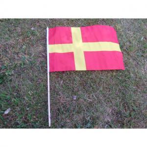 Flagga på pinne Skåne