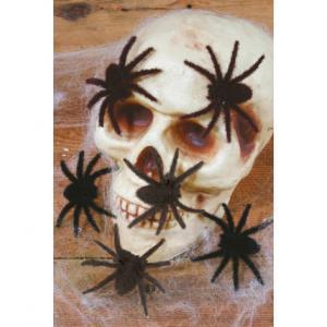 Spindlar Håriga 6st