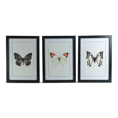 Tavla Fjärilar 3pack