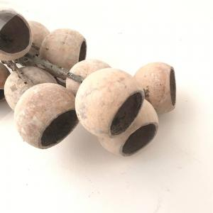 Torkade Bell cups 60cm Vit 10/bunt