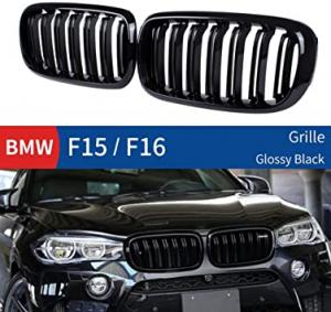 BMW X5 X6 F15 F16 grill njurar till bilen dubbelribb