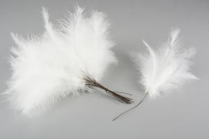 White Duster 144 st - Feather Romance
