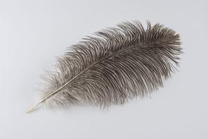 Taupe Ostrich Plume - Feather Romance
