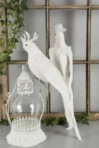 White Parrot Front 50 cm - Feather Romance