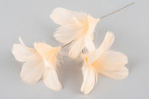 Apricot Flower 12 st - Feather Romance