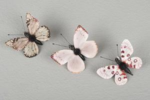 Brown/Pink Clip Mix Butterfly 5 cm - Feather Romance
