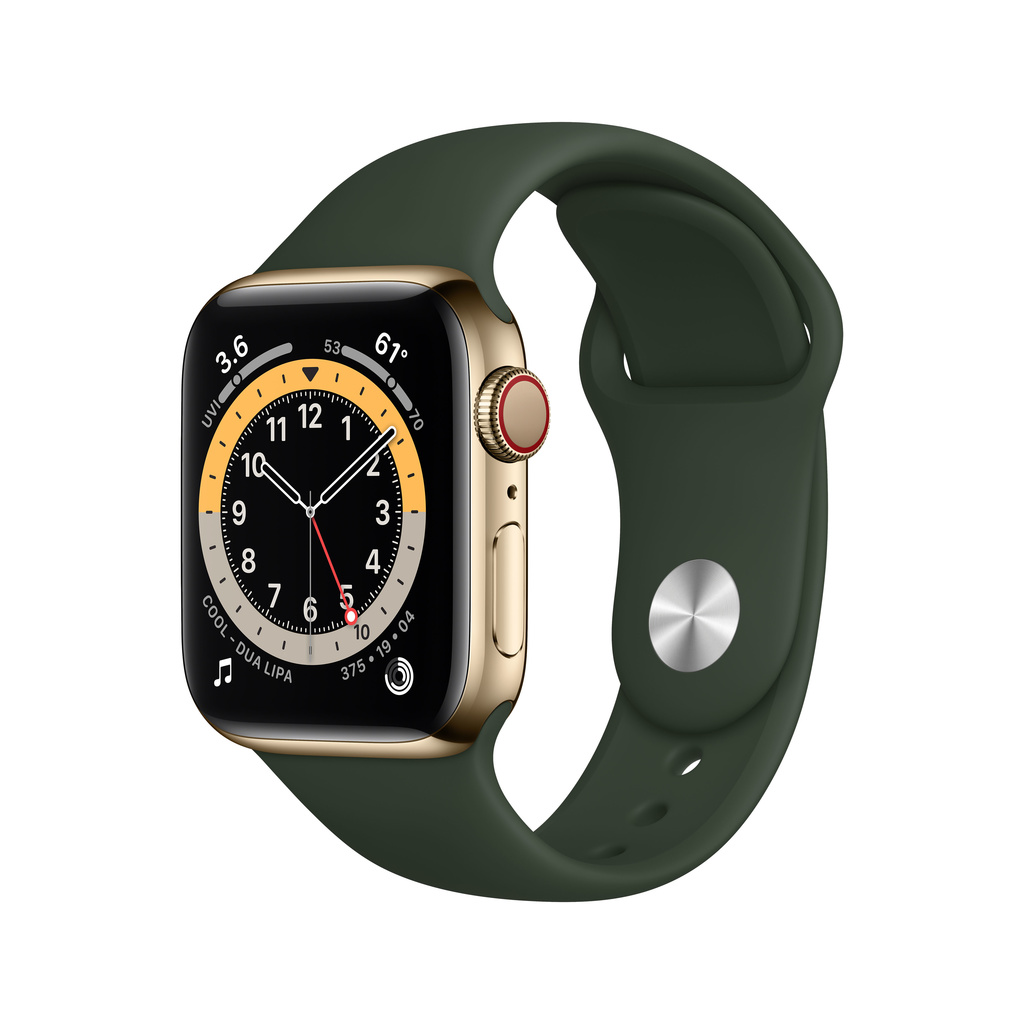 Apple Watch Series 6 Rostfritt Stålboett (2020)
