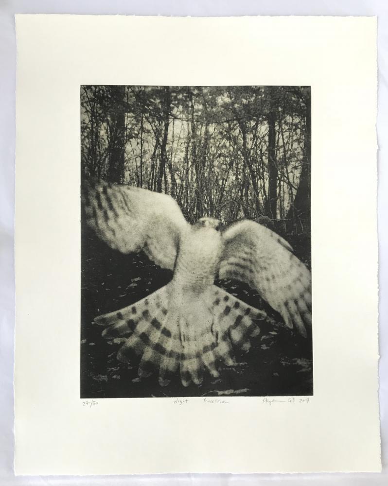 Night Procession - Print Edition