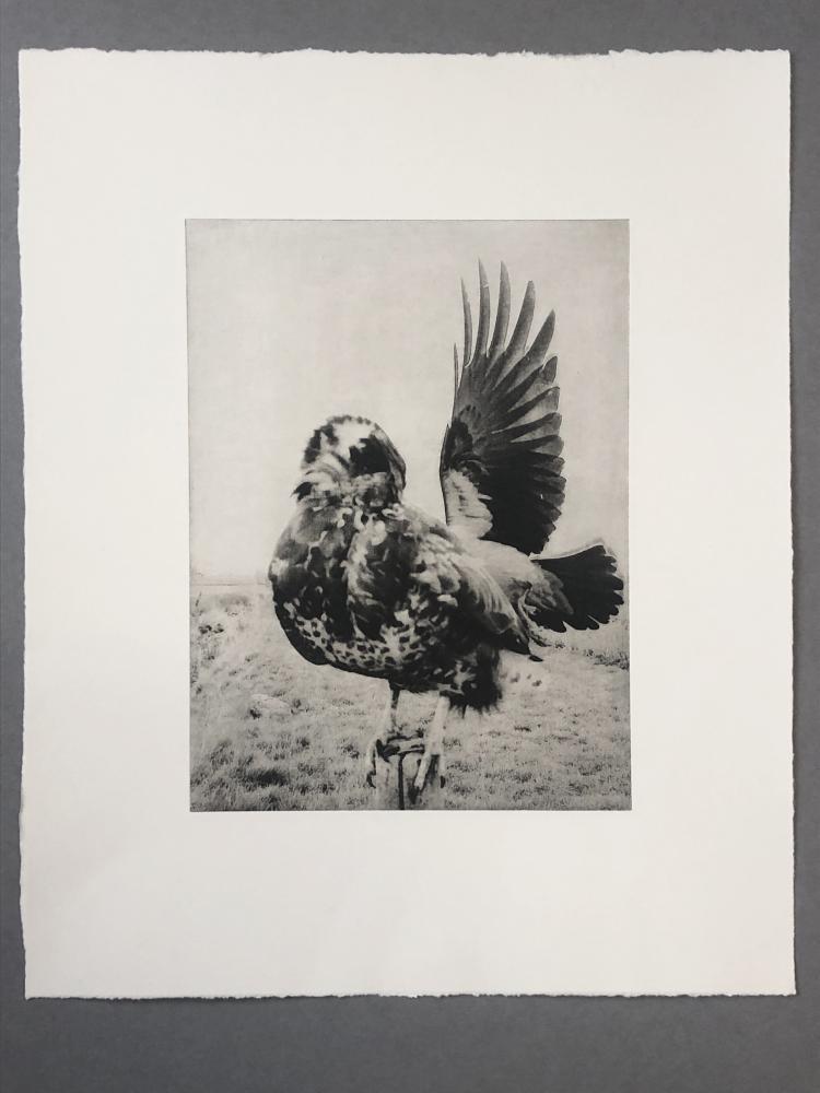 The Pillar - Photogravure print