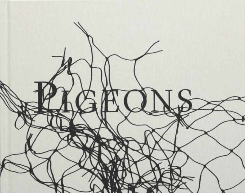 Pigeons - Signed