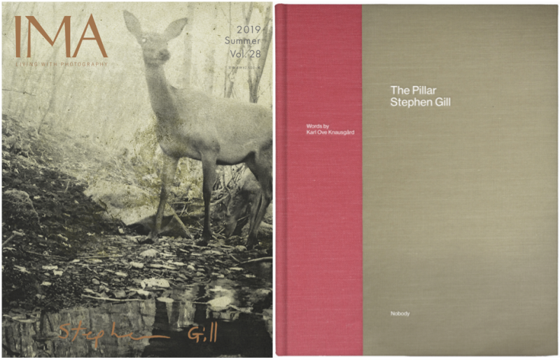 IMA Vol.28 - Stephen Gill & The Pillar