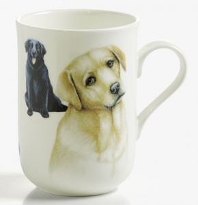 Mugg hund Labrador