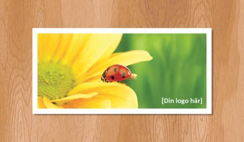 Kallelsekort för laserutskrift, Nyckelpiga Sommar - 300st
