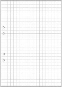 Lösblad A4 rutat 10x10mm hålat (fp om 25 blad)