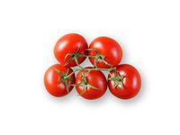 Frökapslar TREGREN Tomat Large