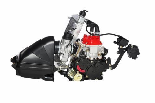 Rotax 125 Max Junior Evo