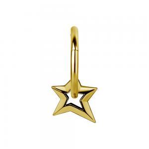 Berlock Stjärna - Hängsmycke till ring - Guldplätering
