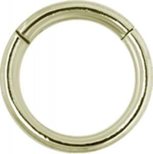 Segment Ring Zircon Guld