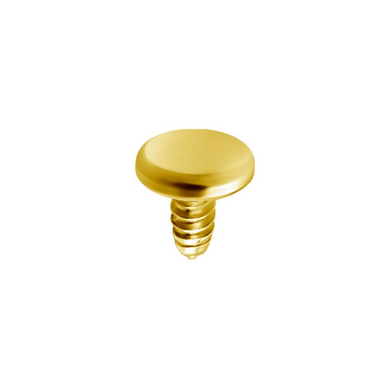 Platt disk - Rund platta till piercing PVD Guld