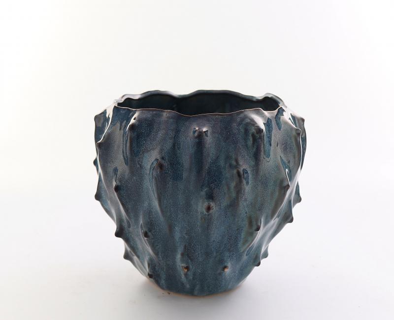 Kaktuskruka blå