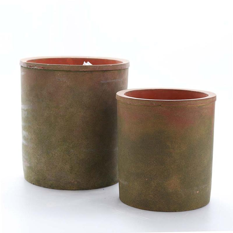 Cylinderkruka mossgrön