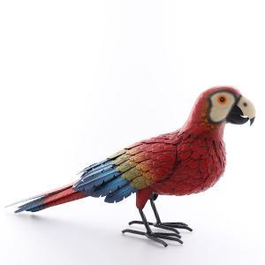 Papegoja plåt röd