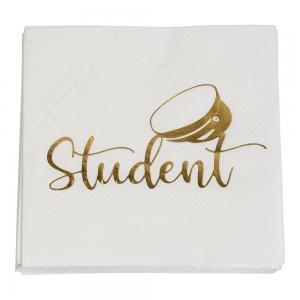 Pappersservett Student 25 x 25 cm