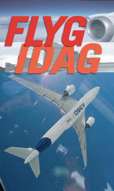 Flyg idag, flygets årsbok 2013