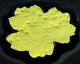 Dichroiskt blad på svart glas. Koefficient 90.