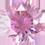 Zirkonia rosa 6 mm rund. Priset är för 2 stenar.