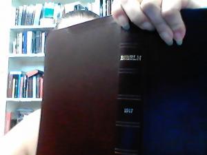 Bibeln, Den Heliga Skrift, mörköd, mjukband, konstskinn, guldnitt, 240x150X25mm