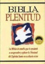 Biblia Plenitud, NVI, Stort format, hård pärm.