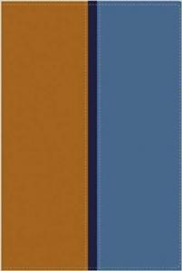 Biblia RVR 1960-NVI Biblia Paralela, stort format, inbunden, mjukt band