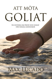 Att möta Goliat: En historia om David och Goliat för vanliga människor