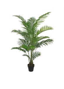 Areca Palm 175 cm.