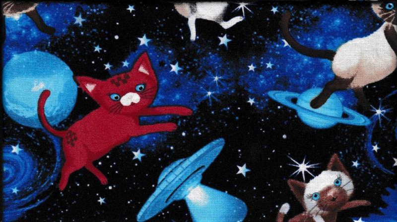 Cat Space  190 kr/m