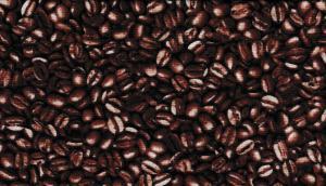 Cofee  220 kr/m