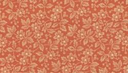 Chrysantemum 165 kr/m