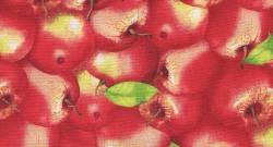 Sunshine Orchard  200 kr/m