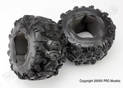 """Tires, Canyon AT 3.8"""" (2)/ foam inserts (2)"""