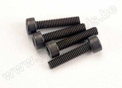 Screws, 2.5x12mm cap-head machine (6)