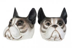 Bulldogkruka grå