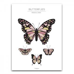 Poster 30x40 butterflies