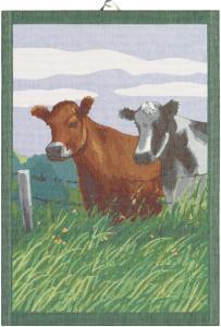 Ekelunds cow