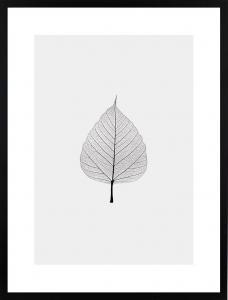 Poster 30x40 light leaf