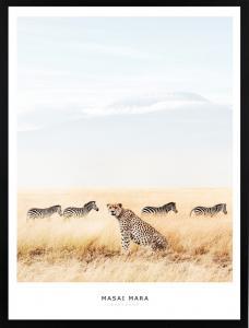 Poster 30x40 masai mara leopard