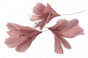 Fjäder blom gammelrosa