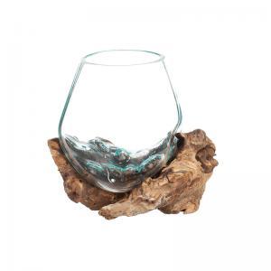 Glasskål på trädrot stor