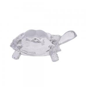 Sköldpadda large