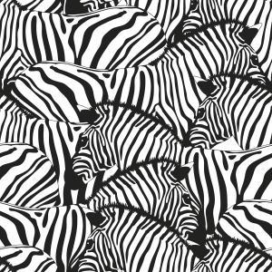 Servetter zebra